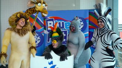 Blue Peter - We challenged the Madagascar cast
