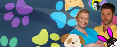 Pets Factor vets with animals