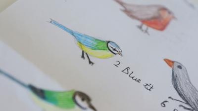 Hand drawn birds.