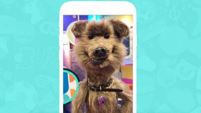 CBBC Buzz - Have a laugh with CBBC Buzz