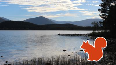 A majestic dark mountain in the background and a tranquil, cold blue loch in the foreground, plus an orange red squirrel outline on the shore.