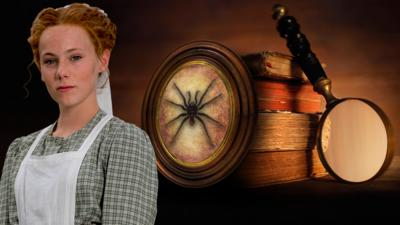 Hetty Feather - The Case of the Missing Spider