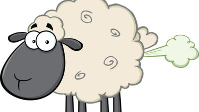 vector graphic sheep farting