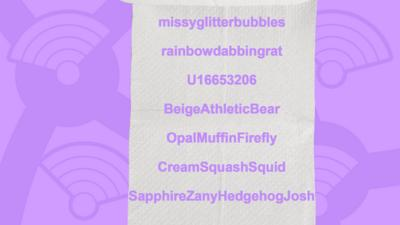 A picture of a toilet roll with the names of users who got the question right, missyglitterbubbles, rainbowdabbingrat, U16653206, BeigeAthleticBear, OpalMuffinFirefly, CreamSquashSquid, SapphireZanyHedgehogJosh.