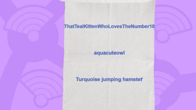 A picture of a toilet roll with the names of the people who got the question right, ThatTealKittenWhoLovesTheNumber10, aquacuteowl, Turquoise jumping hamster.