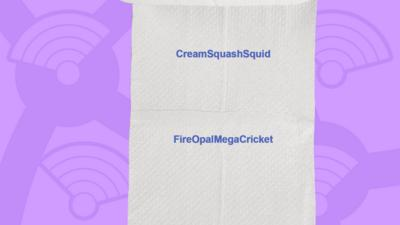 A picture of a toilet roll with the names of the people who got the question right, CreamSquashSquid, FireOpalMegaCricket.