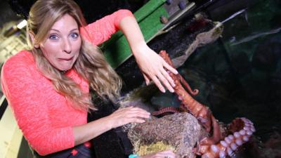 Naomi's Nightmares of Nature - Nightmares of Nature: Aquatic Animals
