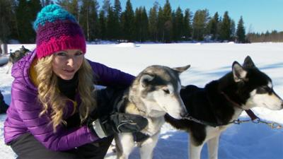 Naomi's Nightmares of Nature - Naomi's Husky Dog Nightmare