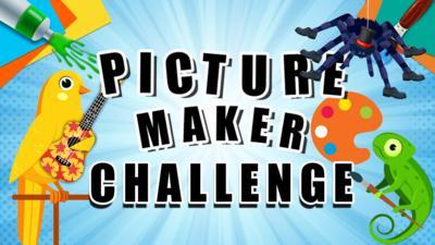 CBBC - Picture Maker Challenge - Pet Secret Talent