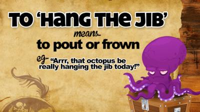 To \u2018Hang the jib\u2019 means\u2026 to pout or frown. E.g. \u201CArr, that octopus be really hanging the jib today\u201D.