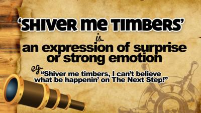 \u2018Shiver me timbers\u2019 is\u2026 an expression of surprise or strong emotion. E.g. \u201CShiver me timbers, I can\u2019t believe what be happenin\u2019 on The Next Step!\u201D.