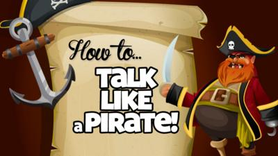 'How to... Talk like a pirate' and a pirate.