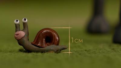 Shaun the Sheep - Spot Shelly (the snail)