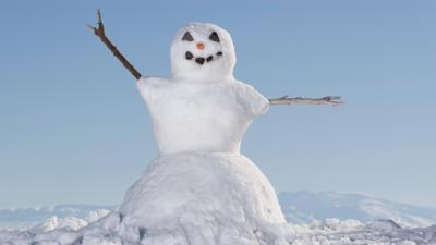 School Survival Guide - Your: Fun stuff to do on a snow day