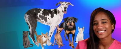 Three cats and three dogs in a group. Woman to the right - Cheryl from The Pets Factor.
