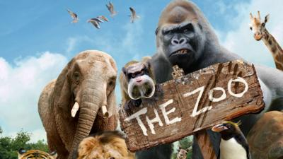 The Zoo - Welcome to The Zoo