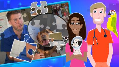 The Pets Factor - Jigsaw: The Pets Factor