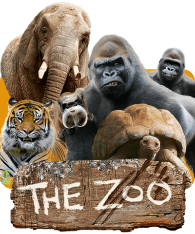 Zoo animals smiling together, a gorilla, elephant, tiger and tortoise.