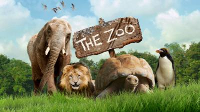 The Zoo - Who in The Zoo are you?