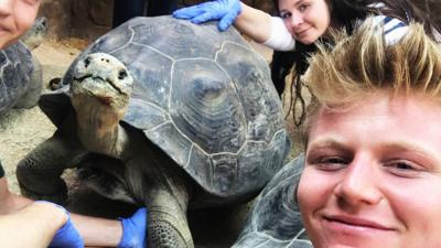 Matilda and the Ramsay Bunch - The Ramsays meet Galapagos tortoises