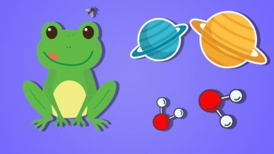 Top Class - Quiz: Science #5