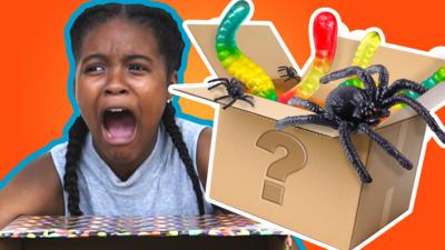 Top This - Top This: What's in the Box Challenge