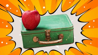 School Survival Guide - What would be in your ultimate packed lunch?