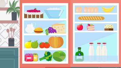 CBBC - What's in the fridge?