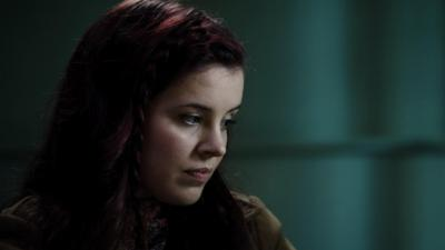 Wolfblood - The Organisation
