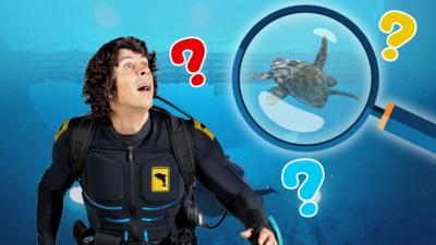 Andy's Aquatic Adventures - Spot the Difference Quiz