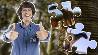 Andy's Prehistoric Adventures - Andy's Prehistoric Adventures Jigsaw