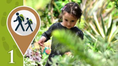 A little girl walking through a garden