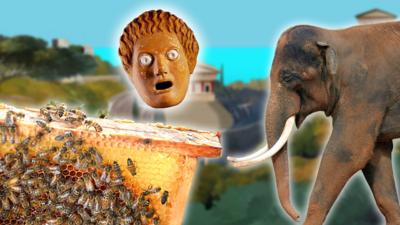 A bee hive, a greek mask and an Indian elephant.