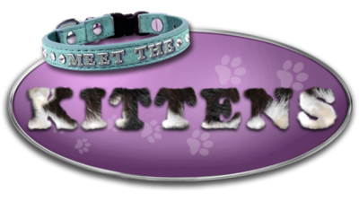 Meet the Kittens Logo