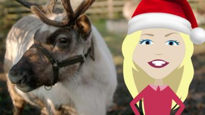 Maddie's Do You Know? - Maddie's Reindeer Quiz