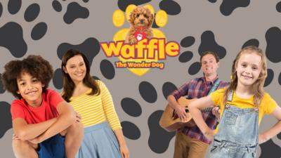 Waffle the Wonder Dog - Which Member of the Brooklyn-Bells are you?