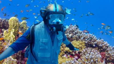 Andy's Safari Adventures - Andy's Underwater Quiz