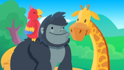 Gorilla, Giraffe and a Parrot