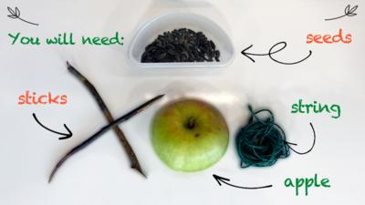 An ingredients page, showing an apple, sticks, string and seeds for the Apple Bird Feeder make.