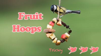 Bird feeders make, showing a blue tit perched on a fruit hoop feeder, with the text 'Fruit Hoop' and three bird stamps saying 'Tricky'.