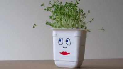 Mr Bloom's Nursery - Cress Heads Make