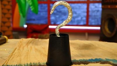 Swashbuckle - Hook Hand