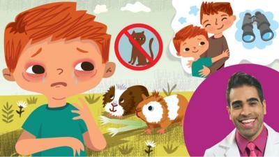 CBeebies Radio - Bohdan's Beastly Allergy