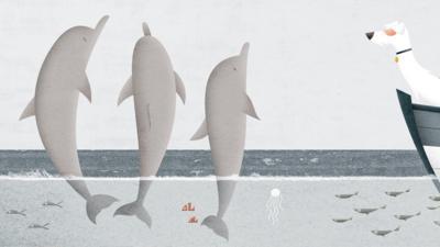 CBeebies Radio - Dukulele – Duke Swims With Dolphins