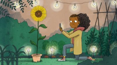 CBeebies Radio - Enna Gee's Adventures – Here Comes The Sunflower