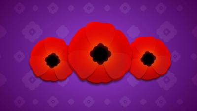 Three Poppies on a purple background