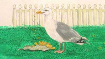 CBeebies Radio - Little Robin Meets… Seagull