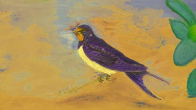 CBeebies Radio - Little Robin Meets… Swallow