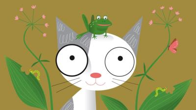Oscar the Cat with a frog sitting on his head.