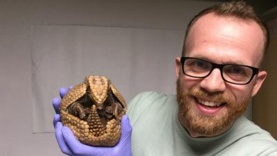 Ferne and Rory's Vet Tales - Armadillo & Bearded Dragon